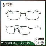 Optische Frame van het Oogglas Ultem Plastic Eyewear van de manier het Populaire met Slank Roestvrij staal 3306