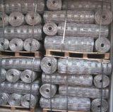 최신 담궈진 직류 전기를 통한 가축 담 또는 목초지 담 또는 양 담