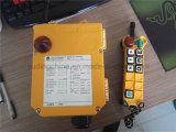 Crane ambientale Wireless Remote Control per Industrial Remote Control/Radio Remote Control F24-6D per Crane