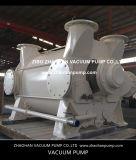 вачуумный насос 2BE4500 для бумажной промышленности