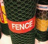 """1/2 """", 1 """", 3/4 """" плетение провода PVC Coated шестиугольные/сеток мелкоячеистой сетки"""