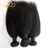 Cabelo não processado do Virgin do cabelo Mongolian reto Kinky de 8A Remy