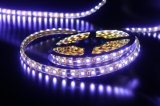 Promotion를 위한 LED Rope Light Series LED Strip Light