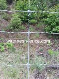 Поле гальванизированное высоким качеством Fence-Hts001A