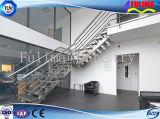 新式の磨かれたStepstairかステアケースまたは梯子または階段(SSW-S-005)