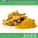 Curcumine hydrosoluble naturelle de l'extrait 95% de Longa de safran des Indes de 100%