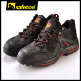 De Schoenen van de wandeling (m-8045)