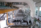 열과 힘의 700kw 천연 가스 동세대에 의하여 결합되는 발생