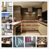 Meubles de PVC/machine de panneau mousse de plancher/plafond/porte