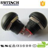 Interruptor ligero iluminado LED blanco de botón del SGS 5A de la lámpara micro del interruptor