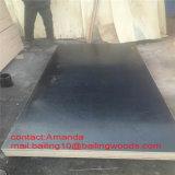 Madera contrachapada fenólica de la madera contrachapada/del infante de marina del grado de la construcción