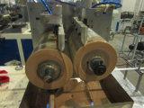 Machine à sortie unique d'extrusion de bordure foncée de PVC de constructeur professionnel chinois