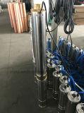 versenkbare tiefe Pumpe des Quellwasser-4SD2/10 für Bewässerung (0.75KW/1HP)
