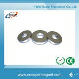 China-Fabrik-Zubehör-starkes Neodym-großer seltene Massen-Ring-Magnet