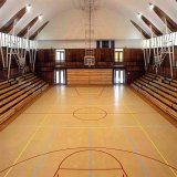 PVC Sports Flooring pour Basketball