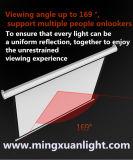Manuels d'intérieur extérieurs abaissent l'écran de projection visuel