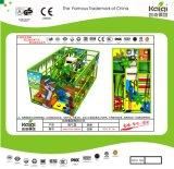 Kaiqiの子供の柔らかい演劇のモールおよび多くのための屋内運動場デザイン-使用できる多くのカラー(TQBZ24A)