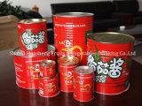 inserimento di pomodoro inscatolato 22%-24% 800g