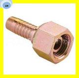 Femelle métrique hydraulique d'embout de durites de couplage 24 joints circulaires H.T. 20513-W 20513-T de cône de degré
