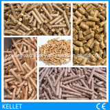 2 t-/hlebendmasse-Tabletten-Pflanzen-/Reis Hust Tabletten-Pflanze