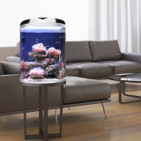 Hot Selling Classic Acrylic Half Round Aquarium