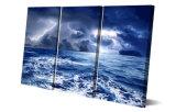 De afgedrukte Hemel van de Regen van het Weer betrekt van het Overzeese van de Aard Canvas mc-137 van het Beeld van de Affiche van het Af:drukken van het Decor van de Zaal van het Af:drukken het Schilderen Canvas