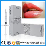 Lábio Reveloungel Lip Injectable Dermal Filler Lip Fullness