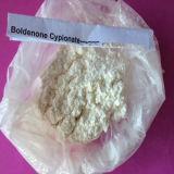 Boldenones Cypionate Anabolic Steroids Powder für Muscle Building
