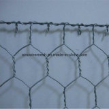 PVC покрывая шестиугольное плетение провода