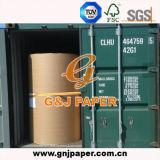 Papel del papel prensa del embalaje del rodillo de la talla estándar para la venta al por mayor