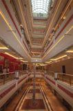 Dakraam van het Dak van de Koepel van het Glas van het Frame van het Staal van de Grote Spanwijdte van China het Structurele