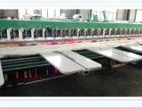 Máquina do bordado do Chenille para a indústria de vestuário com alta qualidade