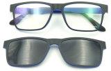 Glaces magnétiques ultra-minces de Sunglasses&Reader&Optical du modèle F151115 neuf