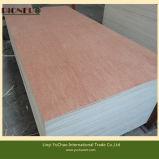 Bintangor Plywood Board avec Combi Core pour Moyen-Orient Market