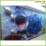 Kundenspezifischer Drucken-Wand-Aufkleber des Anime-3D grafischer