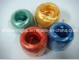 Eco-Ami de 5mm et corde en plastique traitée aux UV (GV)