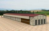 Оборудование дома цыпленка с конструкцией и конструкция с панельным домом