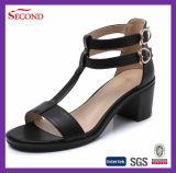 Черные ботинки женщин цвета для розничного торговца
