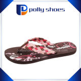 Señora colorida Sandal Shoe Wholesale Slipper