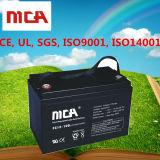 12V AGM van de Cyclus van de 100ahBatterij Diepe Batterijen met de Garantie van 5 jaar