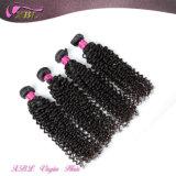 Prix usine Kinky Curly Mogolian gros Human Chine cheveux