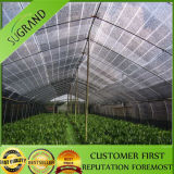 Outdoor HDPE Privacidade Garden Waterproof Sun Shade Sail