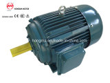 Y2dt Series/Three Phase Multispeed Induction Asynchronous Motor mit Y2adt, Y2idt und Y2ydt