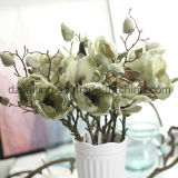 Fleur artificielle de rétro magnolia pour la décoration (SW04803)