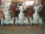 Válvula de porta do selo de pressão 2500lb da flange 2 de Rtj ''