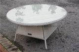 Таблица и стул напольного сада ротанга Wicker большая обедая