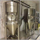 Fermentadores da cerveja para a venda