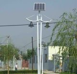 Neuer Design 15W Solar Garten Lighting