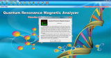 Ressonância popular Analyzer de Magnetic do quantum com Cheap Price