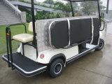 Transporte eléctrico de gran alcance del hospital del carro de la batería de 2 asientos